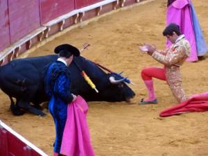 Javier Marín aplaude la muerte de 'Novato', un encastado utrero de Los Recitales, premiado con la vuelta al ruedo.