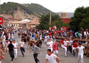 Los toros de Peñajara protagonizaron un bonito encierreo. Fotografía: Eduardo Buxens.