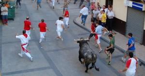 Una salida del toro con soga en Lodosa.