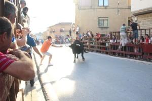 Un momento del encierro de Santacara. Fotografía: ahorazonamedia.com
