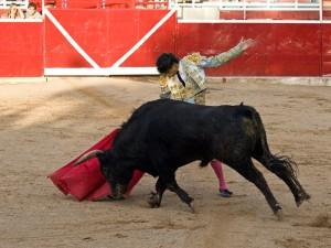 Jesús Martínez con la diestra antte el cuarto, premiado con la vuelta al ruedo. Fotografía: Luis  Miguel Ortega.