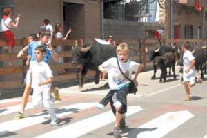 Los niños corriendo delante de búfalas en las pasadas fiestas de Funes.