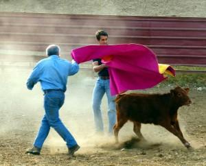 Un aficionado pamplonés torea una becerra al alimón con Francisco Marco. Fotografía: Miguel Monreal.