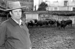 El entonces mayoral de Conde de la Maza, Miguel Reina, en los corrales del Gas ante el encierro que trajo en 1993.