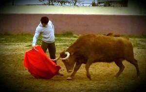Derechazo de Expósito a la seria vaca que le cayó en suerte. Fotografía: Perico Rebota.