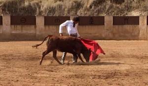 José Tomás toreando una becerra de Torreón de Cañas.