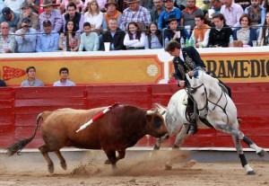 Hermoso, sobre 'Duende', ofreció otra demostración de templado toreo a caballo.