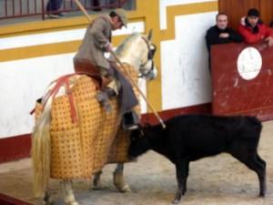 Josleito se animó a picar a la quinta vaca navarra de Santafé Martón.