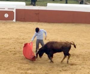 Derechazo largo, de mano baja, de Toñete en la plaza de tientas de Valdolivas.