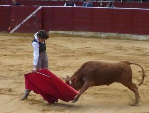Derechazo de David Ruiz a una vaca de Arriazu en la primera eliminatoria.