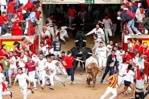 El encierro de Dolores Aguirre del año pasado entrando en la plaza de toros.