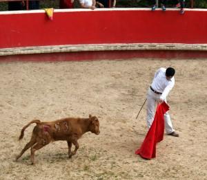 El pamplonés Expósito toreando una becerra en la plaza de tientas de Reta.