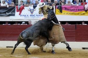 Uno de los toros de José Escolar en el caballo, ayer en Vic-Fezensac. Fotografía: Isabelle Dupin.
