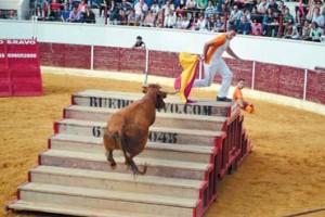 El Especial Arriazu logró llegar la plaza de toros de Mendavia. Fotografía: Juan Suberviola.