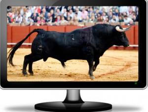 Los toros registran buenas audiencias en los canales de televisión.
