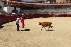 El público escogió la sombra para presenciar la capea. Fotografía: Club Taurino Estellés.