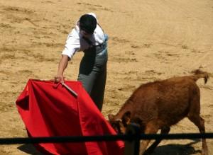 Derechazo de buen corte de Francisco Expósito a una vaca de Macua.