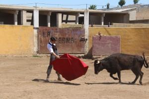 El matador de toros estellés toreando con la diestra.