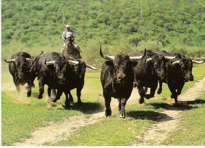 La valoración realizada comprende 529 fincas vinculadas a 360 ganaderías de la UCTL.