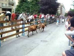 Un encierro de vacas en Barañain.