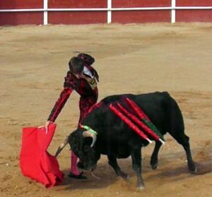 Derechazo de Adrián Henche al primero de su lote, de Ganadería de Pincha. Fotografía: Isabel Virumbrales.