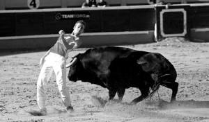 El tudelano Arturo Aurensanz recorta a uno de los toros en puntas. Fotografía: Blanca Aldanondo.