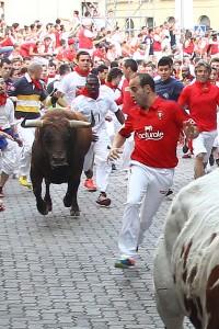 La manada ha llegado al callejón.