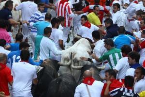 La manada se ha dividido en dos grupos de tres toros. Fotografía: Enfoque Taurino.