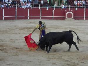 Derechazo de Pedro Gallego. Fotografía: Isabel Virumbrales.