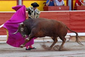 A Perera le correspondieron dos toros deslucidos. Fotografía: PIdal.