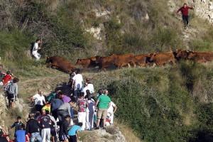 Descenso de la diez vacas. Fotografía: J. C. Cordovilla.