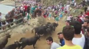 Un momento del encierro de esta mañana, con vacas de Eulogio Mateo. Fotografía: imagen obtenida de un vídeo de Javier Barberán.
