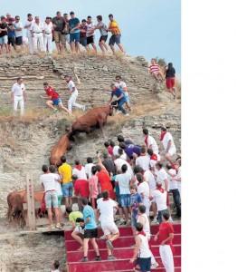 Algunas vacas intentaron escapar pr la pared. Fotrografía: Blanca Aldanondo.