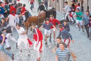 Durante el encierro, las vacas saltaron sin problemas la barricada de la cuesta de Entrañas Fotografía: Montxo A. G.