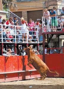 La vaca de Arriazu en el momento de saltar la barrera. Fotografía: Ignacio Fernández.