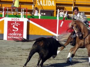 Roberto Armendáriz se lució con 'Caramelo' en el festival celebrado en Noain, muy parecido al de hoy en Cascante.