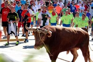 Un momento del toro con soga en Lodosa. Fotografía: Vaquero