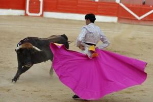 A:ALBERTO GALDONA  F:29-09-2015 L:CORELLA P:3 TORO T:CORRIDA TOROS CORELLA