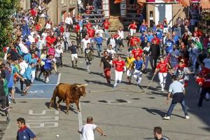 Miles de aficionados disfrutaron en Lodosa de las salidas de toros ensogados. Fotografías: Montxo A. G.