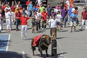 """La delegación de Beas de Segura (Jaén) realizó el """"cascado"""" y engalanado del toro en un poste colocado en mitad de la calle. Fotografías: Montxo A. G."""