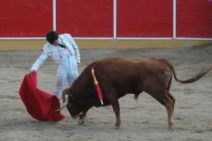 Buen derechazo de Lagartijo ayer en Fitero. Fotografía: Mariano Pascal.