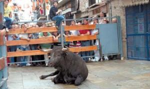 El toro permaneció echado más de veinte minutos. Fotografía:  Rafael Villafranca.