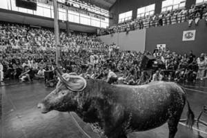 El acto de inauguración del congreso se llevó a cabo en el frontón, abarrotado de público. Fotografía: Montxo A. G.