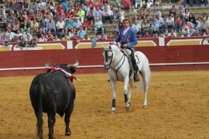 'Pirata', en una de sus actuaciones de este año, dando la cara a un toro. Fotografía: pablohermoso.net