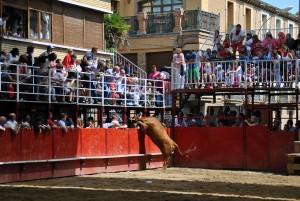 Momento en el que la vaca se salta y se escapa de la plaza de Murchante. Fotografía: Ignacio Fernández.