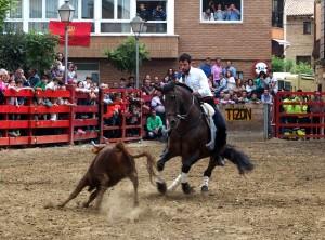 Roberto Armendáriz, sobre 'Ranchero', en la exhibición de toreo a caballo que ofreció hace unos días en Marcilla.