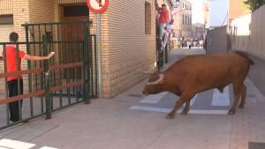 Una vaca del ganadero navarro Arriazu en las calles de Cortes hace dos años.
