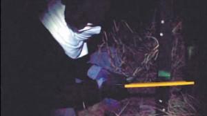 En el vídeo aparece un encapuchado serrando la base de la estructura del toro.