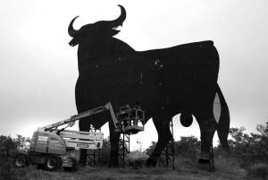El toro de Osborne nuevo, ya reconstruido. Fotografía: NG. Landa.