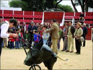 La cuantía de este premio  equivale a la subvención anual que recibía la escuela del ayuntamiento madrileño.